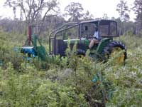 Herbicide application with Foambrush