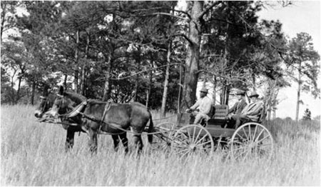 Hunting wagon on Tall Timbers, 1926. Genevieve Beadel is seated at far right.