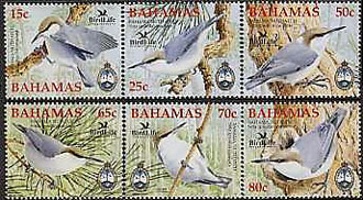 Bahamas stamps features their nuthatch.