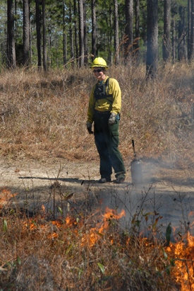 Fire Ecology graduate student, Tracy Hmielowski, was one of the crew at the Wade Tract preserve burn this past March.