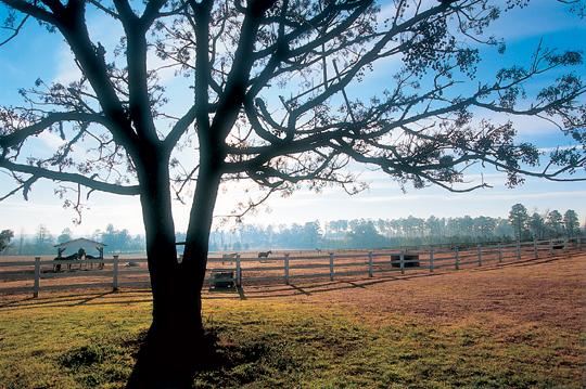 A property under conservation easement