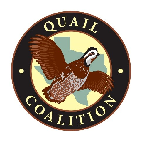 Quail Coalition logo