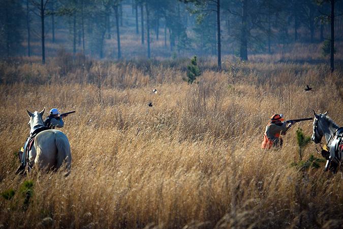 Hunting-Pic_TTLC_web