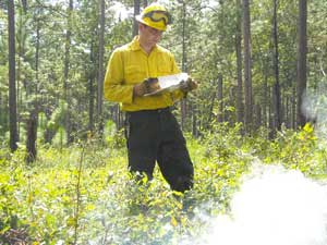 Fire Ecology Research  Scientist Kevin Robertson. (Photo by Jason Isbell)