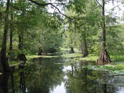 lake-iamonia