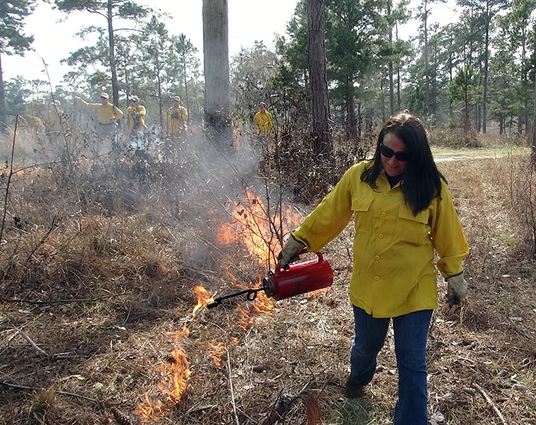 NRCS participant igniting pineland during the workshop on fire in southern pinelands.