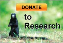 Donate to Research