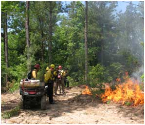 Students monitor a test fire before a controlled burn at a Nature Conservancy training course.