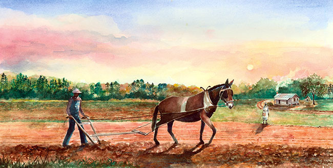 Watercolor, Plowing with Mules by Eluster Richardson was commissioned for the Jones Family Tenant Farm exhibits.
