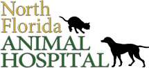 NFL Animal Hospital logo