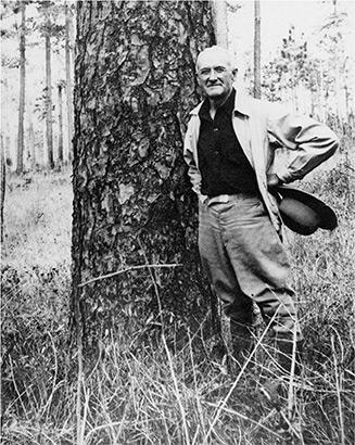Herbert Stoddard