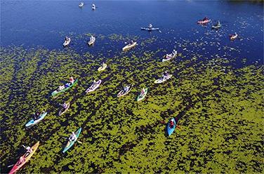 Kayaking Areal
