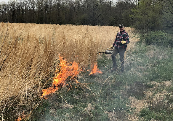 Prescribed Burning