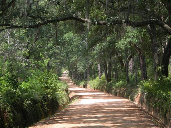 Thomas County historic roadways