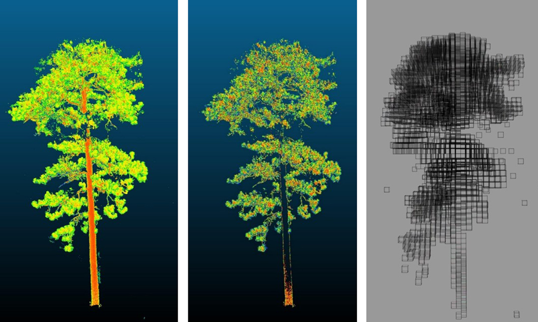 "Terrestrial laser scanning is being used to both identify vegetation structure, but also components like leaf area, surface to volume ratios, and bulk density. Converting these scans into ""voxels"" (i.e., cubes) of fuel that models can use is a critical step in our work."