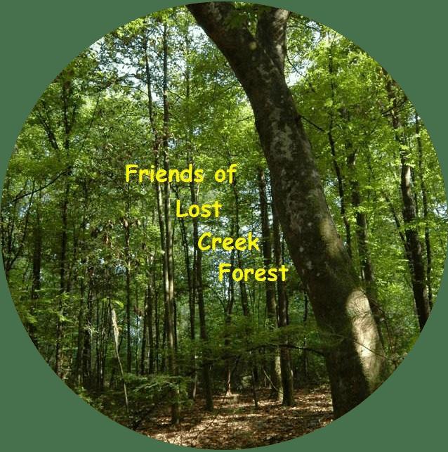 Friends of Lost Creek